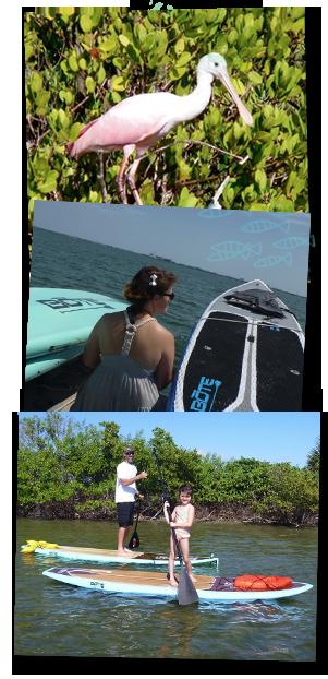 inshore fishing awass